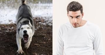 «Моя собака стоит дороже тебя». 5 признаков быдло-животновода