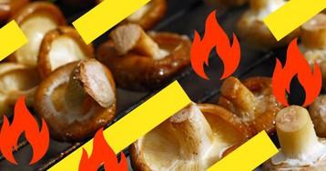 Что приготовить на природе, кроме мяса: 10 вкуснейших блюд