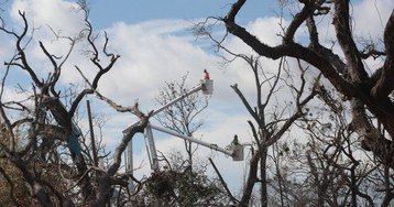 FCC Blames Wireless Carriers for Outages After Hurricane Michael, Pretends It's Not Also to Blame