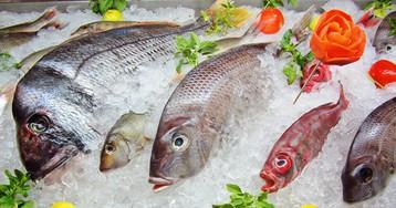 Как выбрать замороженную рыбу?