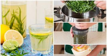 Домашний лимонад с тархуном: пошаговый фото рецепт