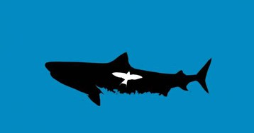Tiger sharks eat migratory land birds: A study