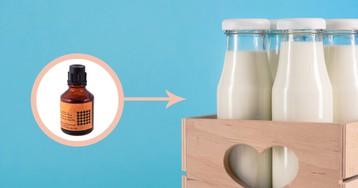 Как отличить поддельные молочные продукты от настоящих: практические эксперименты