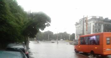 Деревья вырвало с корнем: непогода в Луганске наделала беды. ФОТО