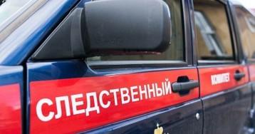 ВТобольске погиб ребенок. Горожане говорят овозможном нападении