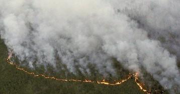 Сибирь полыхает: кто разрушил систему лесной охраны