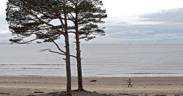 10 туристов из Петербурга пропали в Белом море
