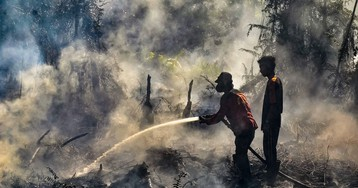 Jokowi Says He'll Fire Officialsif They Fail to Tackle Forest Blazes
