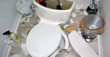 Toilet Explosions: More Common Than You Might Think