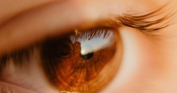 Нейросеть научилась «узнавать» болезни глаз по фото с фундус-камеры