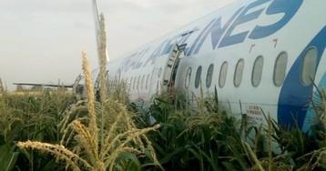 Появилась запись попадания птиц в двигатель лайнера «Уральских авиалиний»