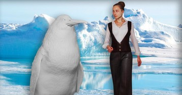 Scientists Just Discovered That Penguins Used To Be Human-Sized