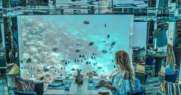 Реализация грез в подводном ресторане на Мальдивах