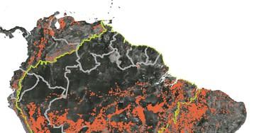 В штате Амазонас горят тропические леса, ипоследствия этого гораздо хуже, чем последствиялесных пожаров Сибири