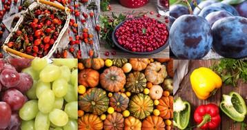Сезонные продукты сентября: делаем покупки с пользой для здоровья и кошелька
