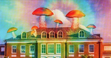 The U.S. Is Now Home to the Biggest Shroom Research Center in the World