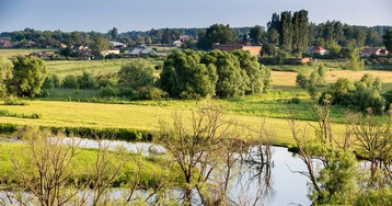 Экологическая повестка в Тамбовской области