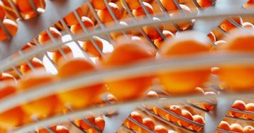 A New Circular Juice Machine Turns Orange Peels into Bioplastic Cups