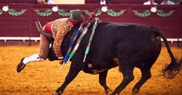 Declarada inconstitucional en Portugal la prohibición de festejos taurinos