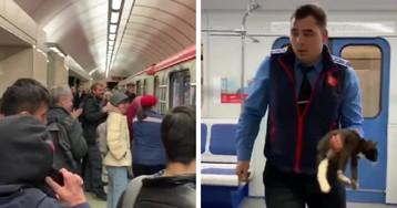 Машинист московского метро спас упавшего на рельсы котенка (ВИДЕО)