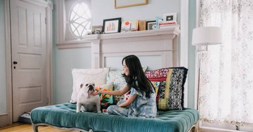 9 Products You Need to Pet-Proof Your Home