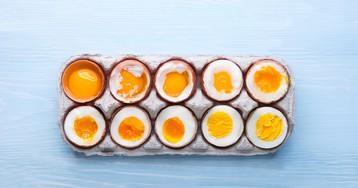 Диета без холестерина —полезен ли для здоровья отказ от куриных яиц?