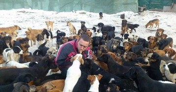 Serbian Shelter: Kind-Hearted Man Cares For 750 Abandoned Dogs