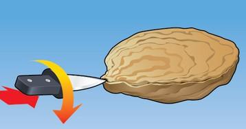 Как открыть устрицу