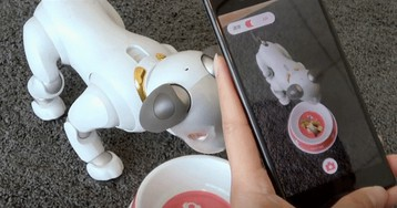 You Can Now Buy Pretend Food for Your $2,900 Sony Robot Dog