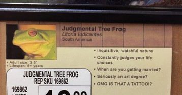 Prankster Replaces Pet Names With New Labels In Local Pet Store