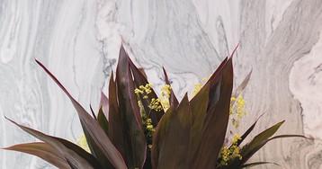 Cristina Celestino Designs the Bangle Collection for Budri
