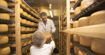 Salud retira los productos de una quesería guipuzcoana por listeria