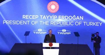 Эрдоган назвал дату запуска «Турецкого потока» в обход Украины