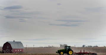 The overwhelming majority of 'farmer bailout' money is going to big business