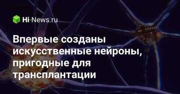 Впервые созданы искусственные нейроны, пригодные для трансплантации