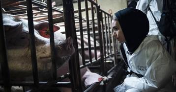 La actriz Rooney Mara viaja al interior de una ganadería industrial