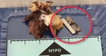 NYPD officer injured when he bites a razor blade in sandwich he bought from shop in Queens