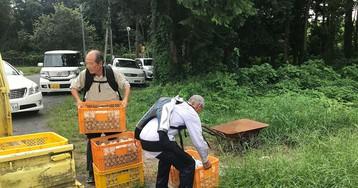 Пожилые японцы надевают экзоскелеты и продолжают работать