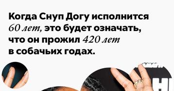 Когда Снуп Догу исполнится 60лет, это будет означать, что онпрожил 420лет всобачьих годах