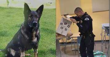 Watch: Officer brought to tears by gift in memory of fallen K-9 partner