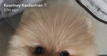 Kourtney Kardashian Claps Back At Critics Mad About Her Fam Getting Another Dog!