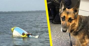 Австралийца спасли после кораблекрушения благодаря собаке, 11 часов плывшей по морю
