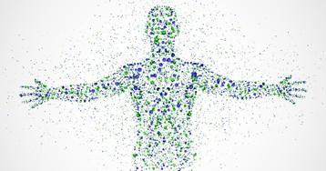 Что такое клетка организма? Какое строение клетки? Какие виды клеток существуют?