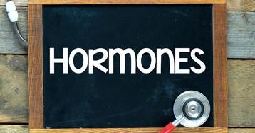 Гормоны - что это? Какие гормоны бывают? Как появляются гормоны?