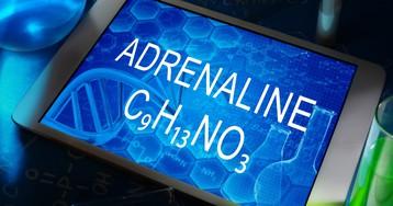 Гормон адреналин - за что он отвечает? Что такое норадреналин?