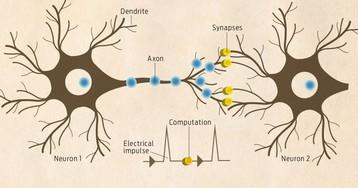 Intel масштабирует сеть нейроморфных вычислений до 100 миллионов нейронов