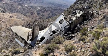 Botanist Looking for Rare Plants Stumbles Upon Plane Crash from 1952