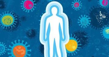 [Из песочницы] Как укрепить иммунитет и защититься от ОРВИ и, вероятно, COVID-19. Факты доказанные наукой