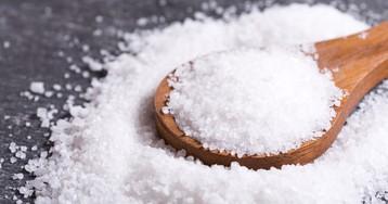 Соляной бунт: события и итоги восстания. Причины Соляного бунта