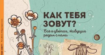 Евгения Гюнтер: «Как тебя зовут?». Рецензия